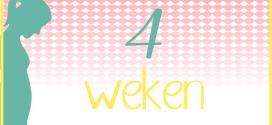 Trotse Moeders Banner - 4 Weken zwanger