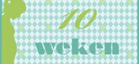 Trotse Moeders Banner - 10 Weken zwanger