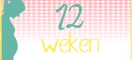 Trotse Moeders Banner - 12 Weken zwanger