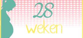 Trotse Moeders Banner - 28 Weken zwanger