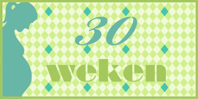 Trotse Moeders Banner - 30 Weken zwanger