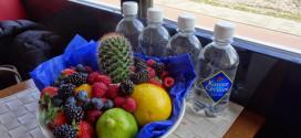 Karvan Cervitam vruchtensmaken