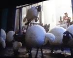 Shaun-schaap-premiere-tuschinski-copyright-trotse-moeders-12