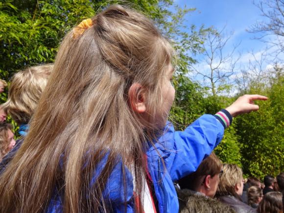 avonturenpark-hellendoorn-copyright-trotse-moeders-17