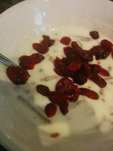 craisins-yoghurt-copyright-trotse-moeders