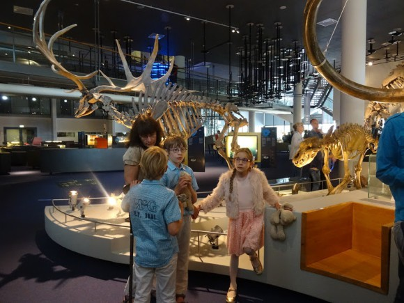 naturalis-night-at-the-museum-copyright-trotse-moeders-5