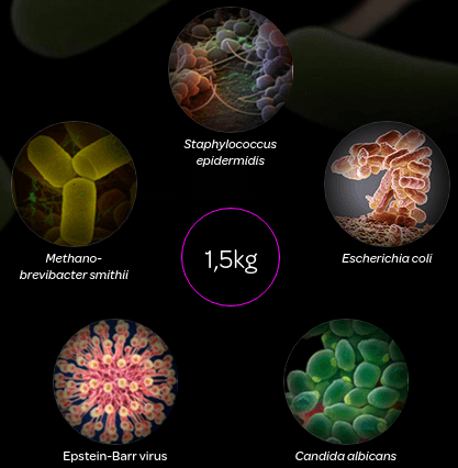 micropia-lichaam