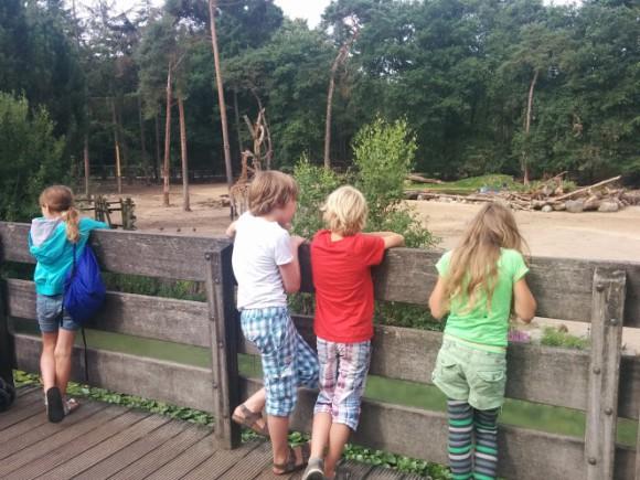 dierenpark-amersfoort-copyright-trotse-moeders-14