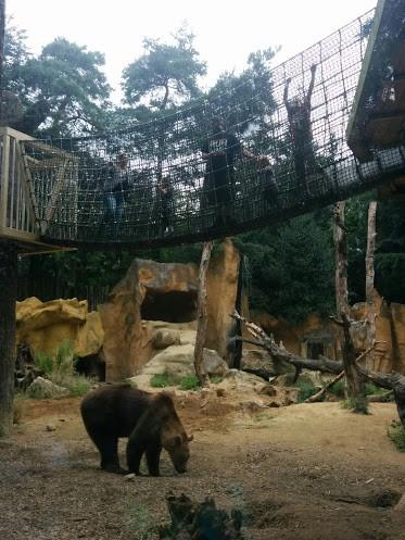 dierenpark-amersfoort-copyright-trotse-moeders-2