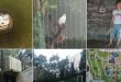 dierenpark-amersfoort-copyright-trotse-moeders-header