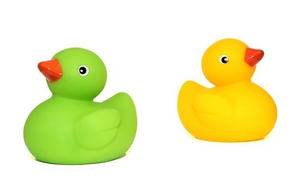 ducks-452485_640