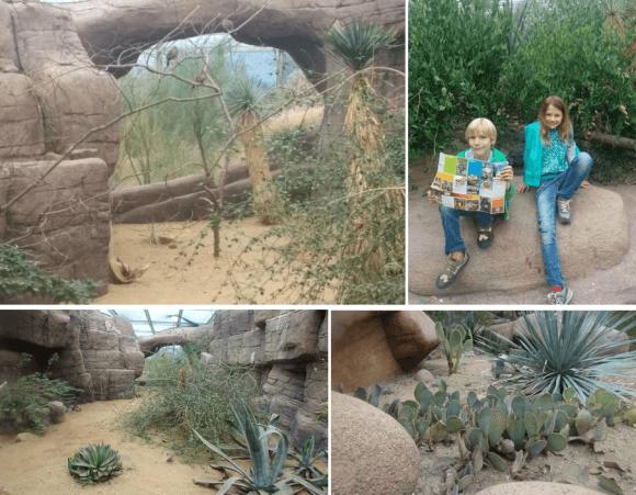 burgers-zoo-dino-verslag-copyright-trotse-moeders-1