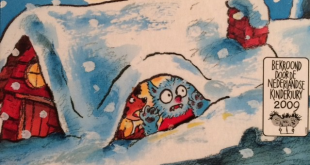 dolfje-weerwolfje-sneeuw-paul-van-loon-copyright-trotse-moeders