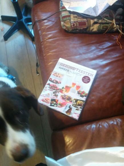 gezond-feesten-kookboek-recepten-copyright-trotse-moeders-2