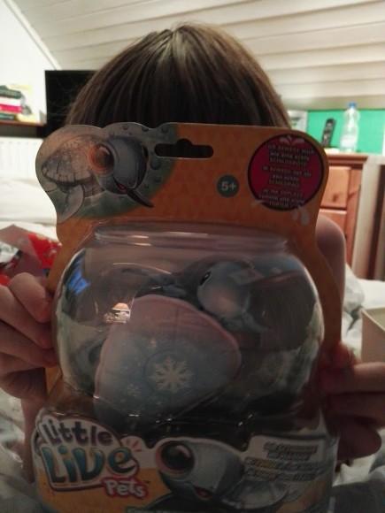 little-live-pets-schildpad-recensie-trotse-moeders-1