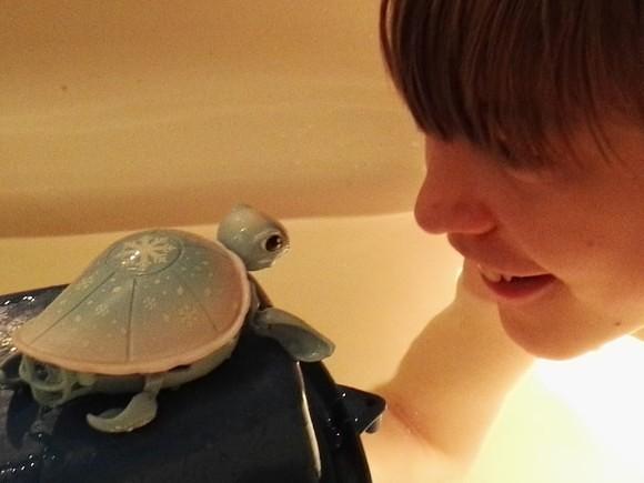 little-live-pets-schildpad-recensie-trotse-moeders-3