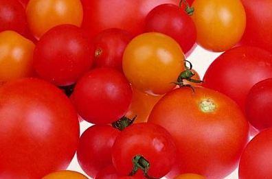 tomaten, antioxidant, lycopeen