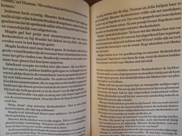 thomas-julia-valse-vleerbij-recensie-copyright-trotse-moeders-3