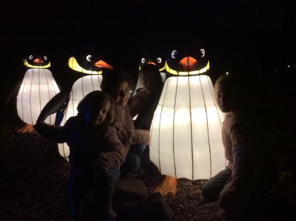 burgers-zoo-dierenpark-dierentuin-light-festival-verlicht-verslag-copyright-trotse-moeders-1
