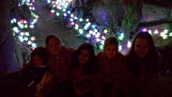 burgers-zoo-dierenpark-dierentuin-light-festival-verlicht-verslag-copyright-trotse-moeders-2