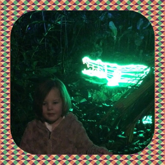 burgers-zoo-dierenpark-dierentuin-light-festival-verlicht-verslag-copyright-trotse-moeders-3