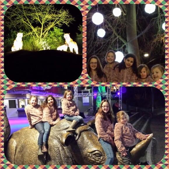burgers-zoo-dierenpark-dierentuin-light-festival-verlicht-verslag-copyright-trotse-moeders-5
