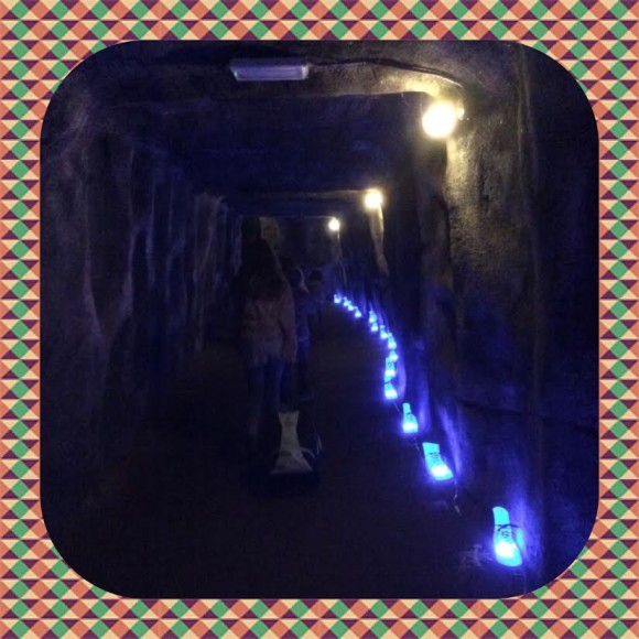 burgers-zoo-dierenpark-dierentuin-light-festival-verlicht-verslag-copyright-trotse-moeders-7