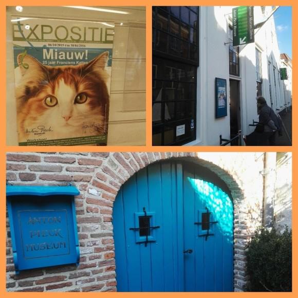 kleuren-workshop-francien-van-westering-katten-foto-copyright-trotse-moeders-6