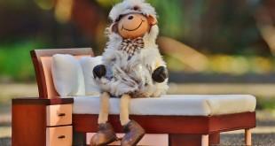 sheep-1125845_960_720