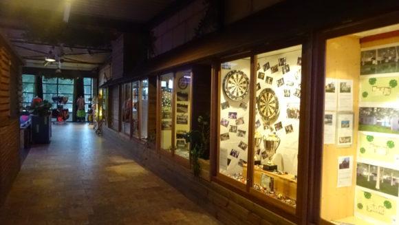vakantiepark De Schatberg darten en van de binnen activiteiten