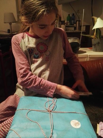 vrolijke-nest-haarspeldjes-bord-recensie-copyright-trotse-moeders-7