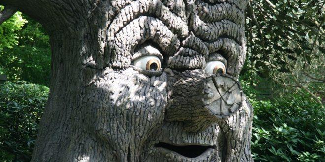 fairy-tree-698286_960_720