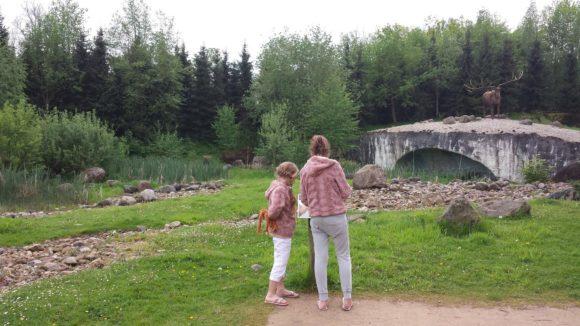 gaia-zoo-bezoek-albertine-verslag-foto-copyright-trotse-moeders-18