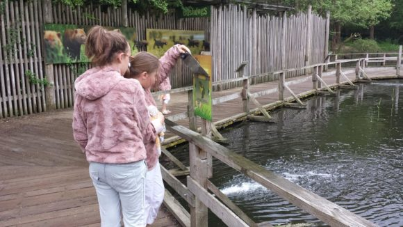 gaia-zoo-bezoek-albertine-verslag-foto-copyright-trotse-moeders-9