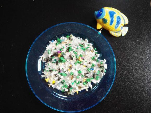 plastic-soep-vissen-artikel-copyright-trotse-moeders-2