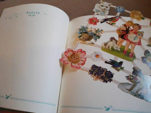 poezie-album-elma-van-vliet-recensie-copyright-trotse-moeders-6