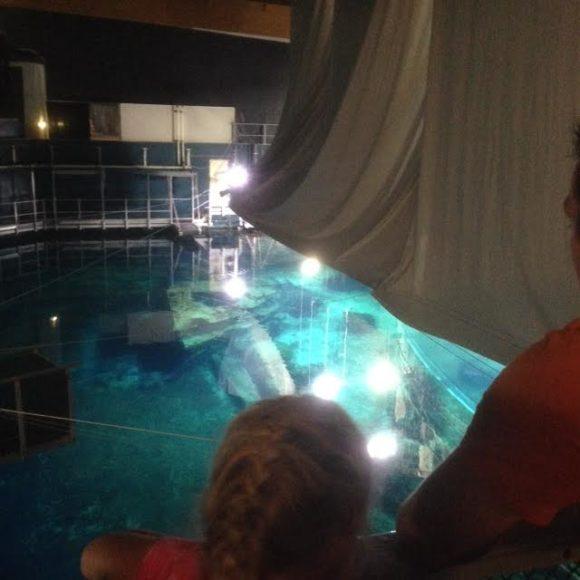 burgers-zoo-musical-onder-water-foto-copyright-trotse-moeders-marjolein-12