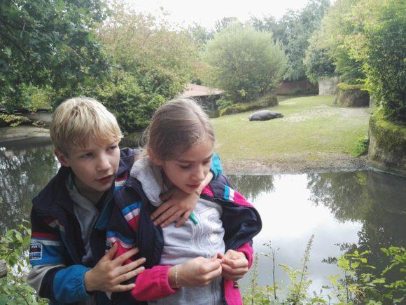 bezoek-gaia-zoo-limburg-dierentuin-foto-copyright-trotse-moeders-14