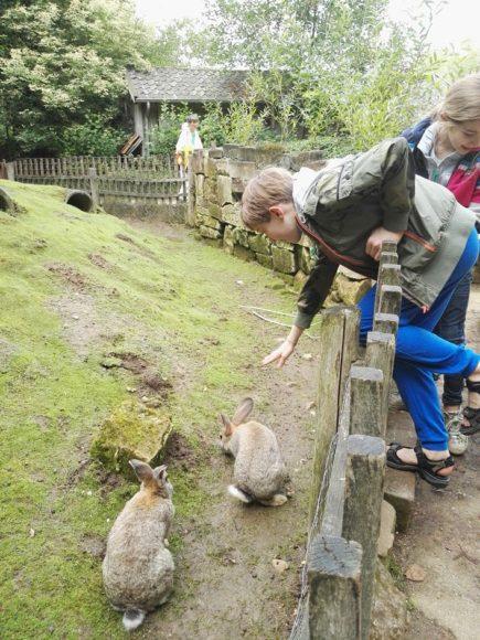 bezoek-gaia-zoo-limburg-dierentuin-foto-copyright-trotse-moeders-24