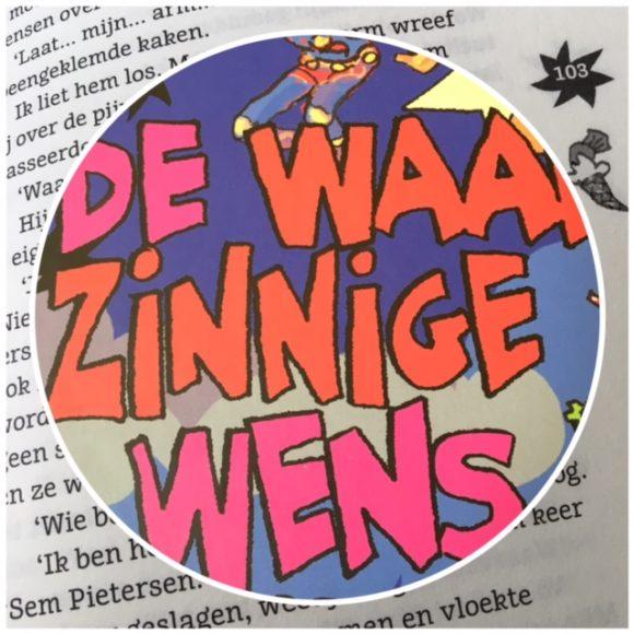 waanzinnige-wens-cover-in-tekst