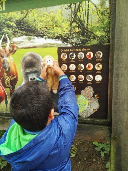 zoo-limburg-dierentuin-foto-copyright-trotse-moeders-12