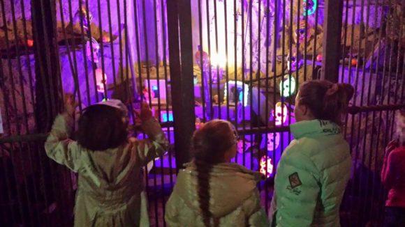 burgers-zoo-dia-de-los-muertos-foto-copyright-trotse-moeders-verslag-albertine-10