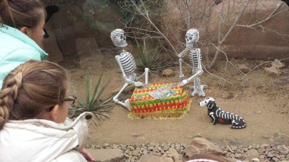burgers-zoo-dia-de-los-muertos-foto-copyright-trotse-moeders-verslag-albertine-21