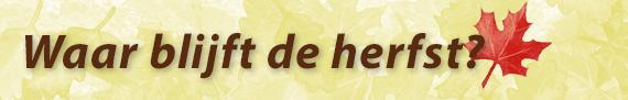 waar-blijft-de-herfst-sanne-recensie-copyright-trotse-moeders-1