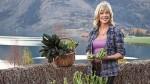 Free_range_cook_annabel_langbeing_garden