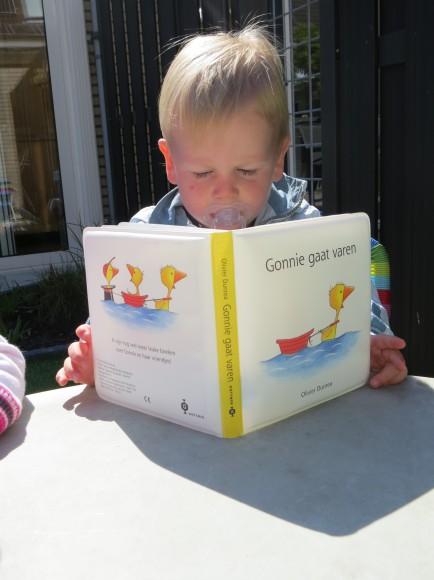 tweeling boek lezen