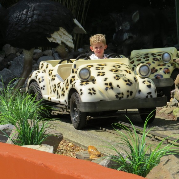 safaribaan