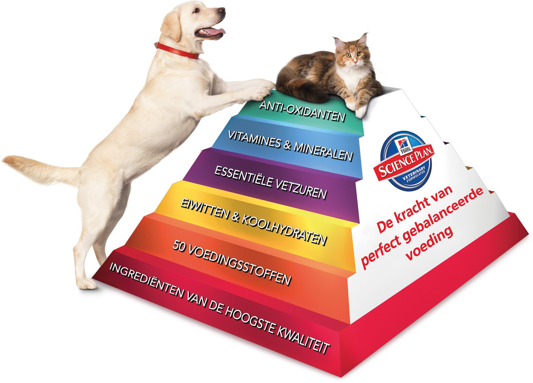 Visual Hill's Science Plan Pyramid