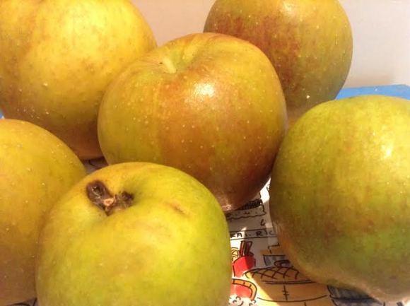 appel-oogst-appelboom-trotse-moeders