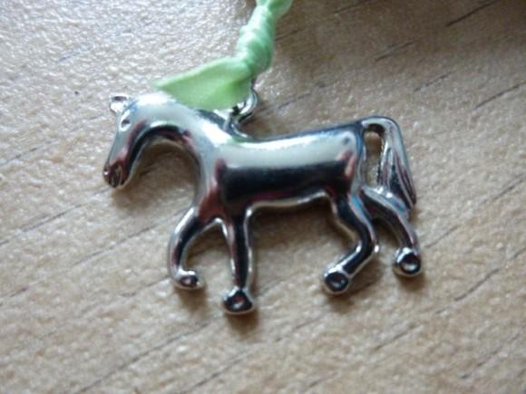 de wilde pony (2)